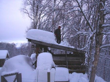 Pete Shoveling Wood Shed Roof